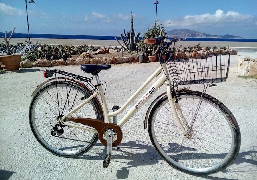 Bicicletta adulto